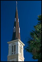 Tall church steeple. Charleston, South Carolina, USA ( color)