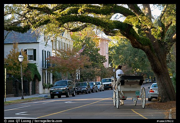 Street and horse carriage. Charleston, South Carolina, USA (color)