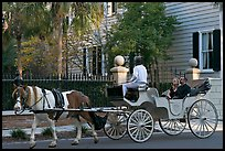 Couple on horse carriage tour of historic district. Charleston, South Carolina, USA (color)