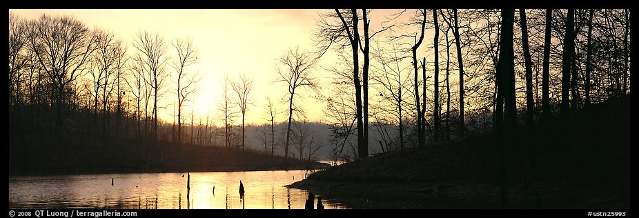 Winter landscape with bare trees and pond at sunrise. Tennessee, USA (color)