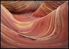 The Wave, main formation. Coyote Buttes, Vermilion cliffs National Monument, Arizona, USA (color)