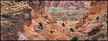 Canyon de Chelly landscape. Canyon de Chelly  National Monument, Arizona, USA (Panoramic color)