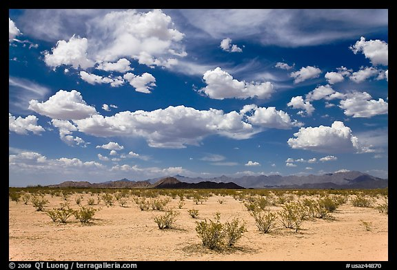 Sandy plain and clouds, Sonoran Desert National Monument. Arizona, USA (color)