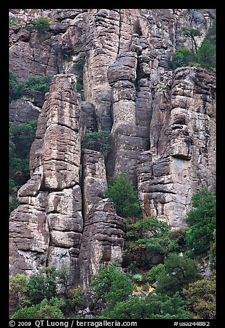 Cliff eroded into stone pillars. Chiricahua National Monument, Arizona, USA (color)