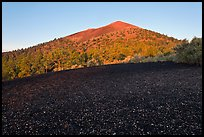 Cinder and Sunset Crater at sunrise. Sunset Crater Volcano National Monument, Arizona, USA ( color)