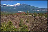 Lava fields and snow-capped San Francisco Peaks. Sunset Crater Volcano National Monument, Arizona, USA ( color)