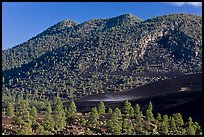 Cinder-covered slopes. Sunset Crater Volcano National Monument, Arizona, USA ( color)