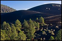 Volcanic landscape with cinder domes. Sunset Crater Volcano National Monument, Arizona, USA ( color)