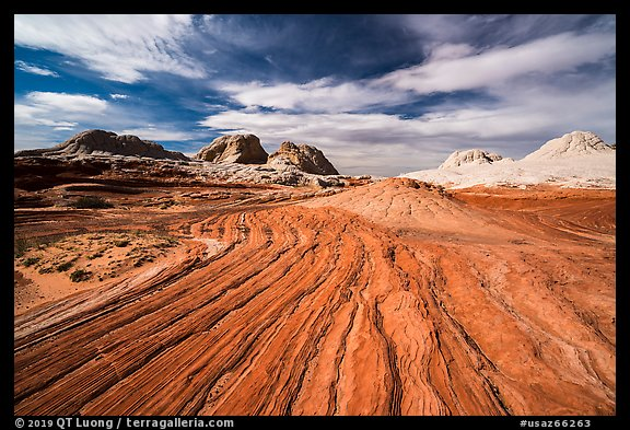 Red swirl, White Pocket. Vermilion Cliffs National Monument, Arizona, USA (color)