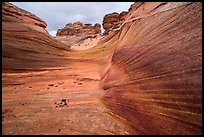 Striated canyon, Third Wave, Coyote Buttes South. Vermilion Cliffs National Monument, Arizona, USA ( color)
