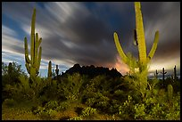 Cactus and Ragged top with moving clouds at night. Ironwood Forest National Monument, Arizona, USA ( color)