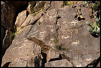 Petroglyphs, Badger Springs Canyon. Agua Fria National Monument, Arizona, USA ( color)