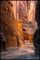 Paria River flowing between tall canyon walls. Vermilion Cliffs National Monument, Arizona, USA ( color)