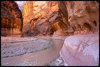Bend in Paria Canyon with windows carved by water. Vermilion Cliffs National Monument, Arizona, USA ( color)