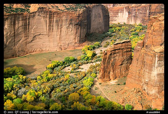 Canyon de Chelly seen from Spider Rock Overlook. Canyon de Chelly  National Monument, Arizona, USA (color)
