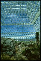 Ecosystem enclosed. Biosphere 2, Arizona, USA ( color)