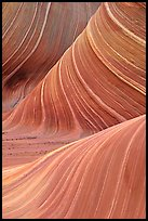 Ondulating rock formation, the Wave. Coyote Buttes, Vermilion cliffs National Monument, Arizona, USA (color)