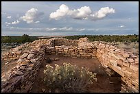 Ruined walls, Lowry Pueblo. Canyon of the Ancients National Monument, Colorado, USA ( color)