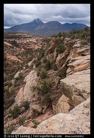 Sand Canyon and Sleeping Ute Mountain. Canyon of the Anciens National Monument, Colorado, USA (color)