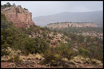 Sandstone cliffs in rain. Canyon of the Ancients National Monument, Colorado, USA ( color)