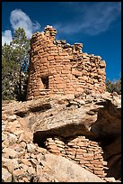 Tower on rock outcropping. Canyon of the Ancients National Monument, Colorado, USA ( color)