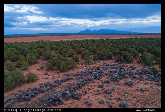 Aerial view of flats and Ute Mountain, evening. Canyon of the Anciens National Monument, Colorado, USA (color)