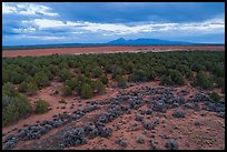 Aerial view of flats and Ute Mountain, evening. Canyon of the Ancients National Monument, Colorado, USA ( color)