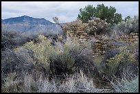 Yucca House and Mesa Verde. Yucca House National Monument, Colorado, USA ( color)