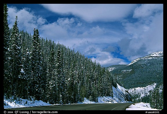 Highway near the Continental Divide at Monarch Pass. Colorado, USA (color)