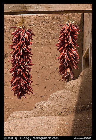 Strings of red pepper hanging from adobe walls. Taos, New Mexico, USA (color)