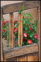 Roses and wooden doors, Sanctuario de Chimayo. New Mexico, USA ( color)