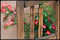 Door and roses, Chimayo Shrine. New Mexico, USA (color)