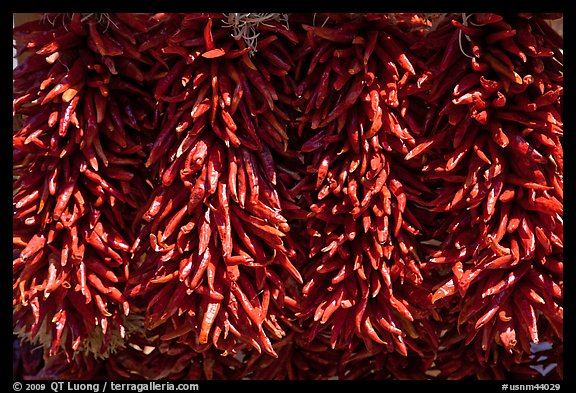 Close up of ristras. Santa Fe, New Mexico, USA (color)