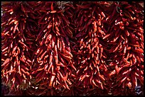 Close up of ristras. Santa Fe, New Mexico, USA