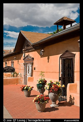 Potted flowers and gallery, old town. Albuquerque, New Mexico, USA (color)