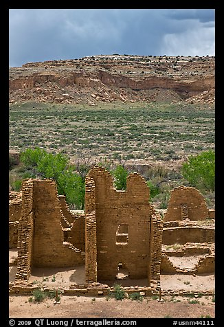Ruined pueblo and cottonwoods trees. Chaco Culture National Historic Park, New Mexico, USA (color)