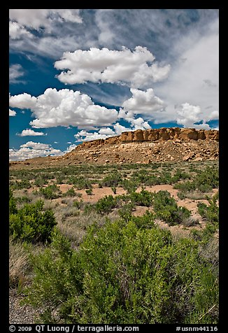 Canyon floor, cliffs, and clouds. Chaco Culture National Historic Park, New Mexico, USA (color)