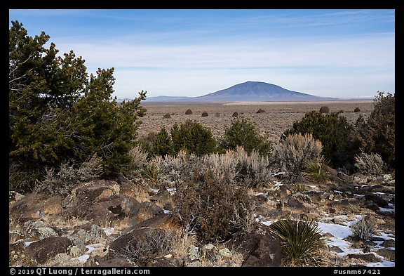 Sagebrush, desert plants, and Ute Mountain. Rio Grande Del Norte National Monument, New Mexico, USA (color)