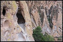 Caves in volcanic tuff rock. Bandelier National Monument, New Mexico, USA ( color)