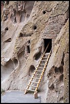 Ladder leading to cave dwelling. Bandelier National Monument, New Mexico, USA ( color)