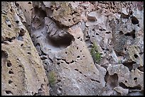 Volcanic tuff cliff with multitude of caves. Bandelier National Monument, New Mexico, USA ( color)