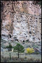 Cliff with cavates, Frijoles Canyon. Bandelier National Monument, New Mexico, USA ( color)