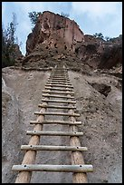 Tall ladder leading to Alcove House. Bandelier National Monument, New Mexico, USA ( color)