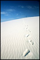 Footprints. White Sands National Monument, New Mexico, USA