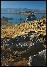Tufa rock and pyramid. Pyramid Lake, Nevada, USA (color)
