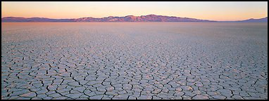 Desert landscape with cracked mud. Nevada, USA (Panoramic color)