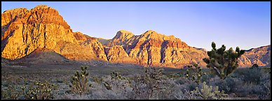 Desert cliffs. Red Rock Canyon, Nevada, USA (Panoramic color)