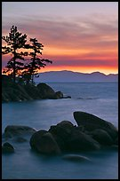Boulders and trees, sunset, Sand Harbor, East Shore, Lake Tahoe, Nevada. USA