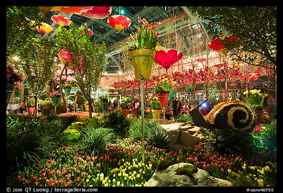 Botanical garden, Bellagio Hotel. Las Vegas, Nevada, USA (color)