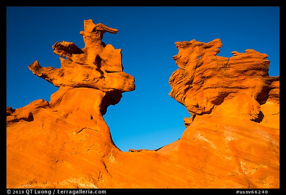 Thin fins of sandstone. Gold Butte National Monument, Nevada, USA (color)